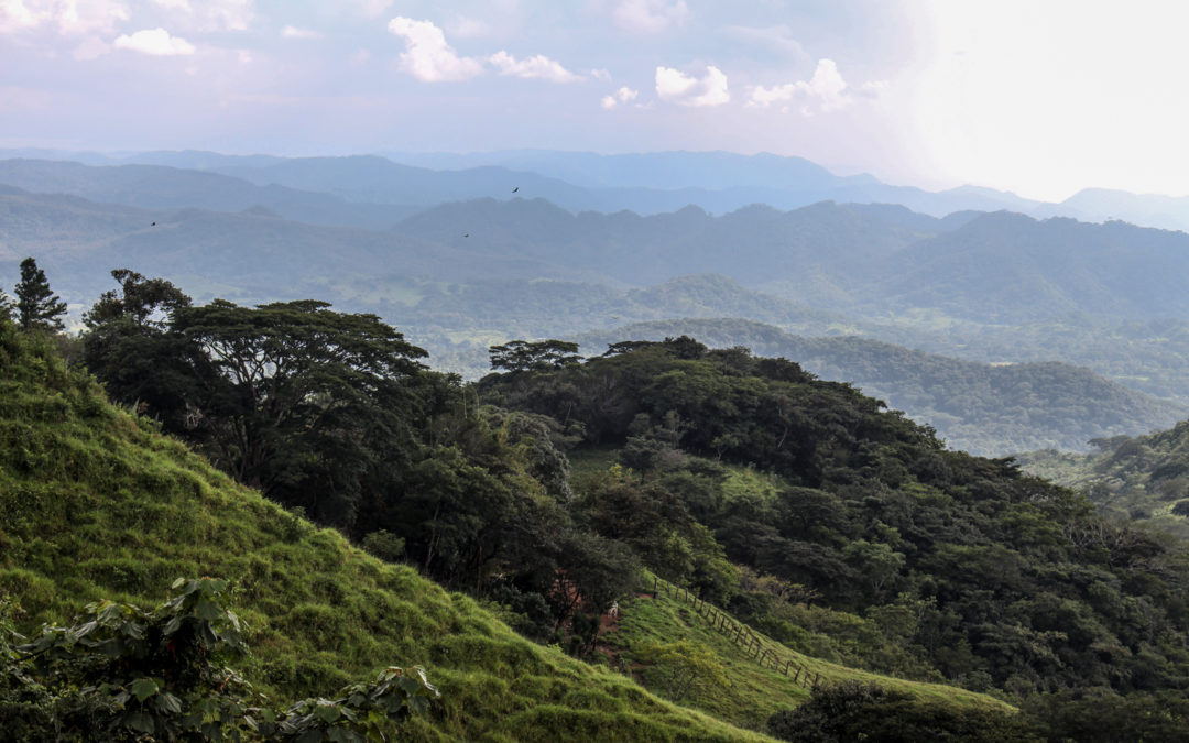Roadtrip durch den Norden: Monteverde