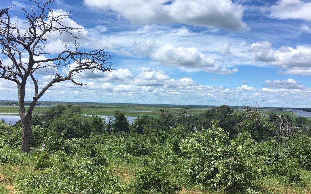 Botswana: Chobe Nationalpark