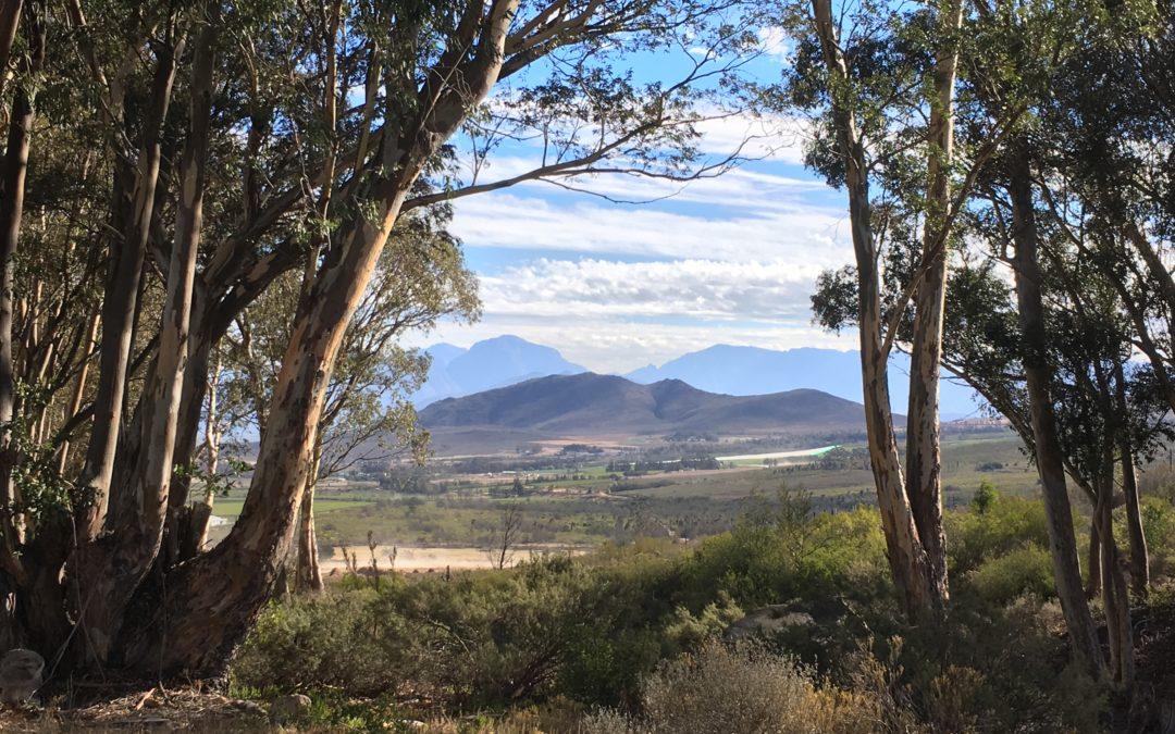 Ostern in Stille – Vipassana Retreat